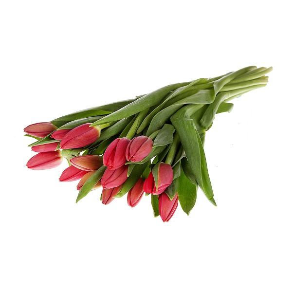 Букет из тюльпанов 8 марта 15шт (товар может отличаться от товара на фото)*