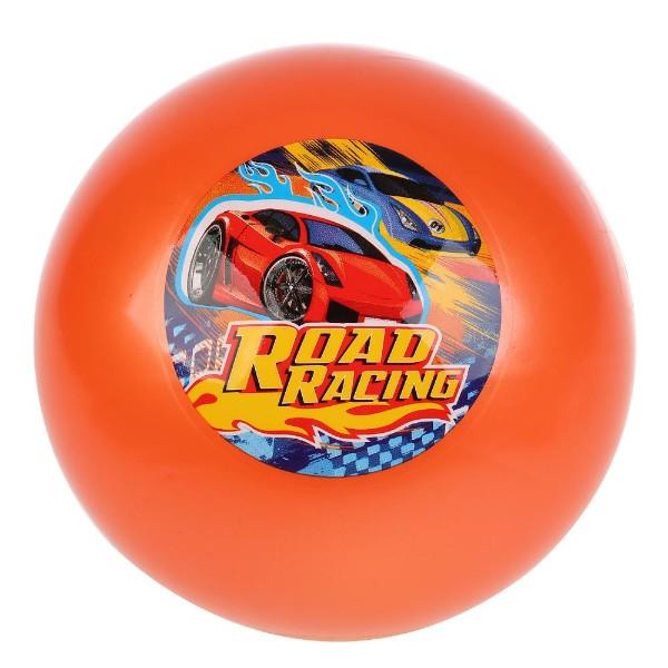 Мяч с наклейкой 23см в сетке гонки