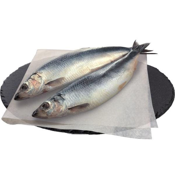 Сельдь атлантическая замороженная Арт-рыба