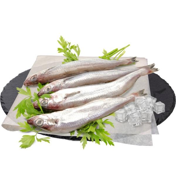 Путассу замороженная Арт-рыба
